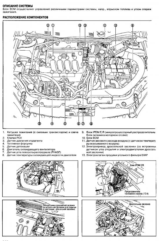 Расположение компонентов системы управения двигателем MR20DE
